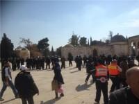 Kepolisian Israel Tahan Enam Warga Palestina