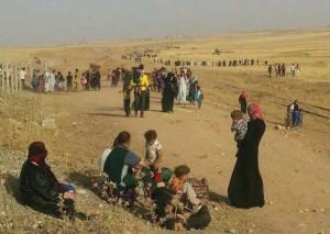 pengungsi irak utara