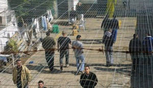 Palestinian prisoners to hold protest in Israeli jails: PA