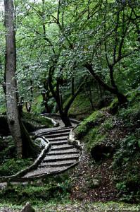 tangga menuju Rudkhan Castle (foto:Syarief)