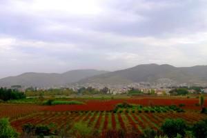 Kota Selcuk, Foto: Farchan