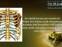 Benarkah Wanita Dicipta dari Tulang Rusuk Pria?