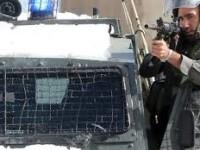 Peluru Pasukan Zionis Gugurkan Gadis Palestina