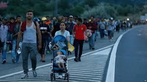 migran crisis