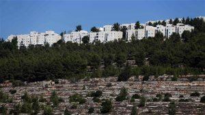 israeli-settler