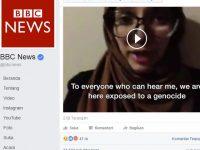 Lina Shamy BBC