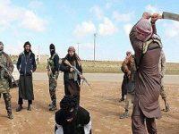 ISIS Eksekusi Muftinya Sendiri