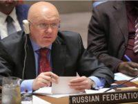 Rusia: Suriah Berhak Lindungi Warganya dari Teroris