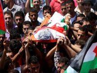 112 Warga Palestina Gugur dalam Kurun Waktu 50 Hari Terakhir