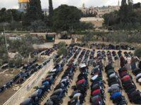 Umat Muslim Palestina saat melaksanakan Shalat Jum'at di Gerbang Al-Rahmah, Masjid Al-Aqsa.