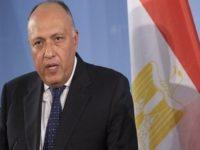 Menlu Mesir Lakukan Kunjungan Mendadak ke AS, Bahas Golan?