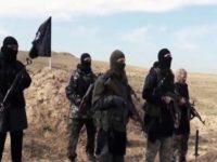 Al-Hashd al-Shaabi Nyatakan ISIS Bawa Senjata Kimia dari Suriah ke Irak