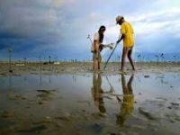Pembangunan Infrastruktur Masif Mengancam Ekologi Bumi