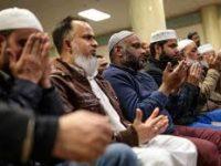 Sejarah Masuknya Islam ke Selandia Baru