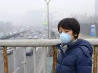 Polusi Udara Dapat Merusak Organ Tubuh