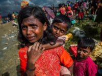 Pejabat PBB Sebut Myanmar Harus Berikan Kewarganegaraan Kepada Rohingya