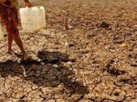 BNPB: 7 Provinsi di Indonesia Alami Kekeringan