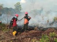BMKG Deteksi 138 Titik Panas di Riau