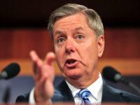 Senator AS: Kita Biayai Proyek Militer AS dengan Minyak Suriah