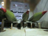 Media Israel: Dibantu Iran, Faksi Jihad Islam Palestina di Jalur Gaza Menghebat