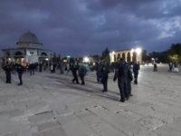 Bagikan Kopi kepada Jemaah Salat, Pria Tua Palestina Ditahan Israel